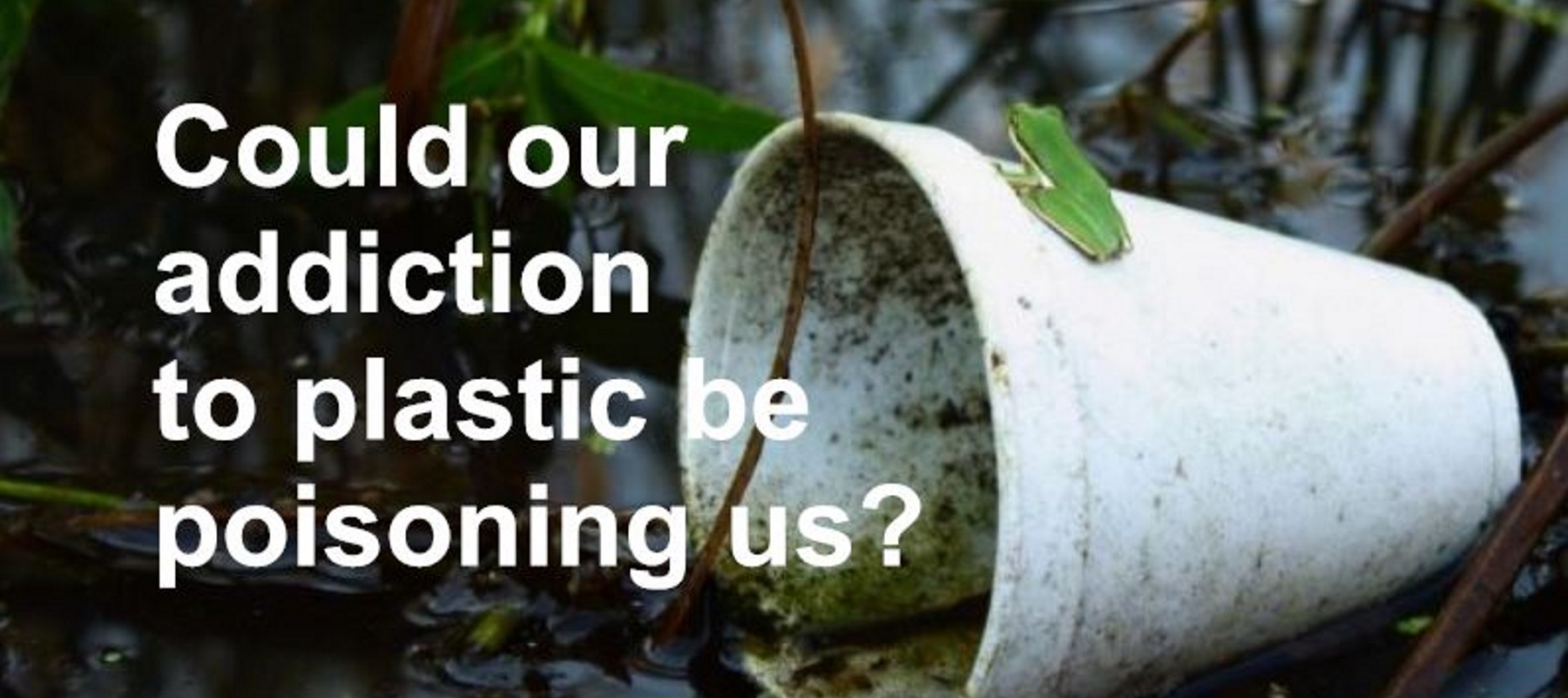 Could our addiction to plastic be poisoning us